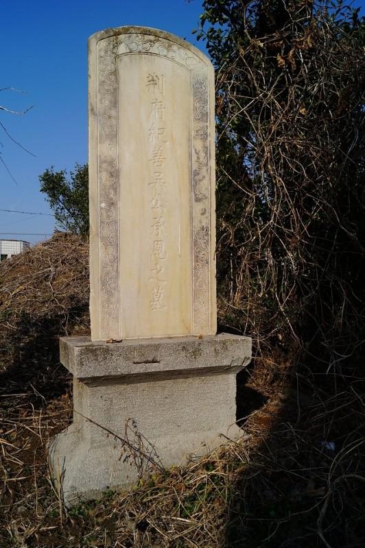 图片[2]-杨士骧墓-老淮安